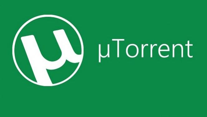 come funzionano i torrent